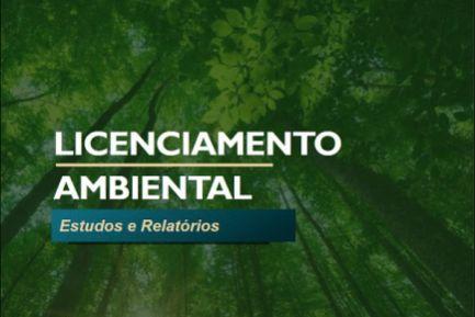 Woodland ambiental